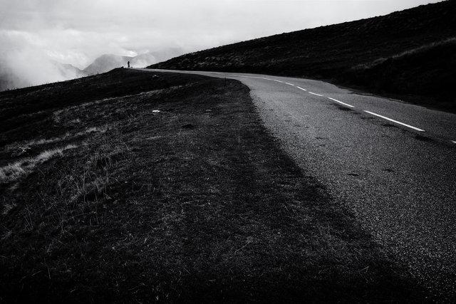 pyrenees  3.jpg