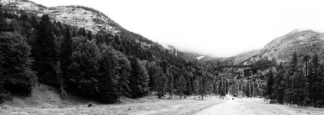 pyrenees  4.jpg