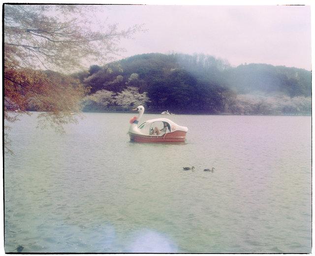 #9 Sakura/Morioka