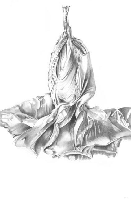 Hibiscus Couplet