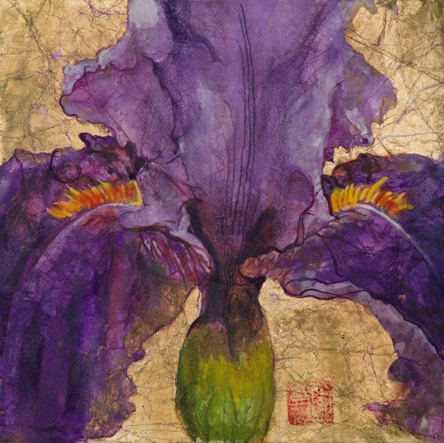 Purple Iris Wisdom