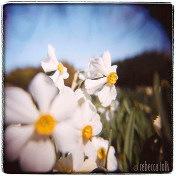 01-05-01-05 Awakening.jpg