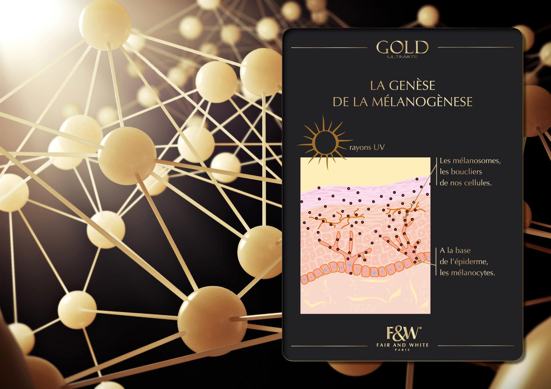 """<font color=""""#aaa7a6"""">Gold : présentation de la gamme (7/20).</font>"""