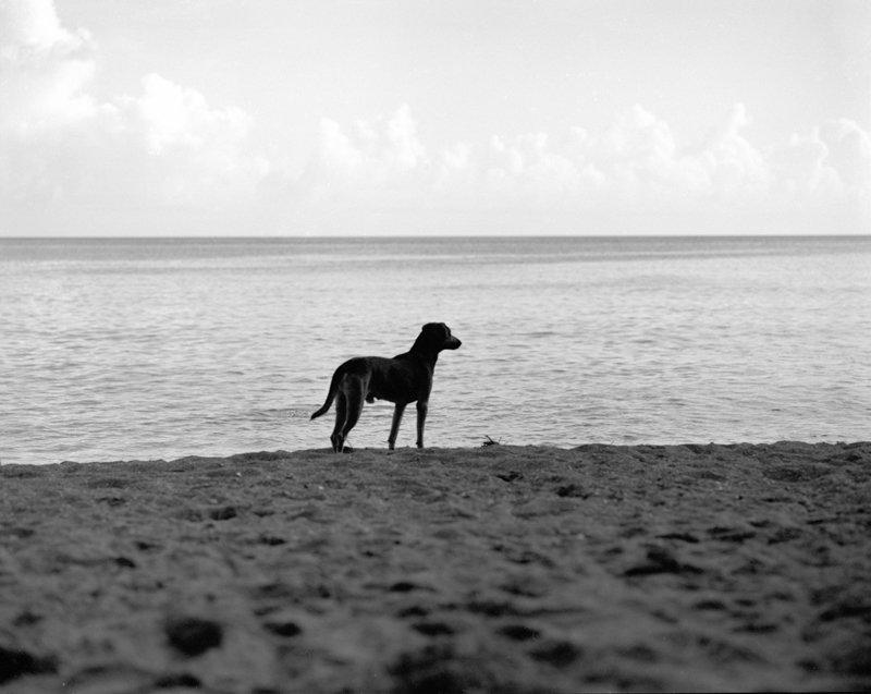St Lucia_032-2.jpg
