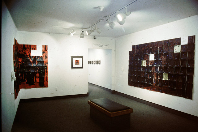 Cultural Landscape  Installation view