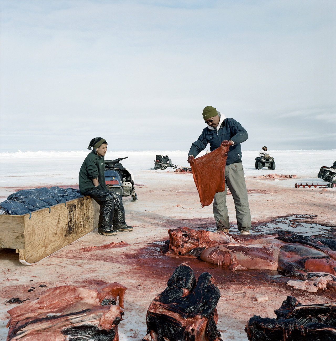 Kobe watching Art taking the liver lining of the whale for a drum, 2012