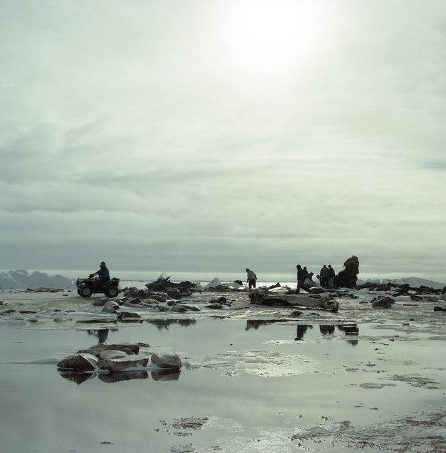 melting ice, 2012