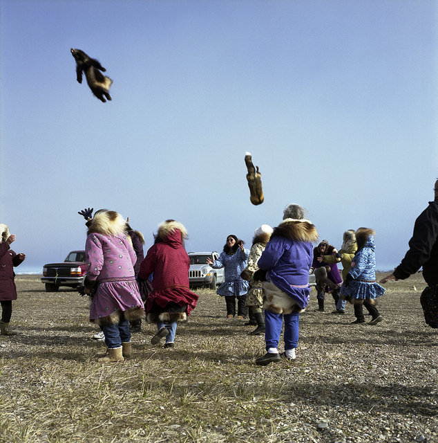 Elders catching gifts thrown from the blanket toss at Kagruk, the whaling festival, 2009