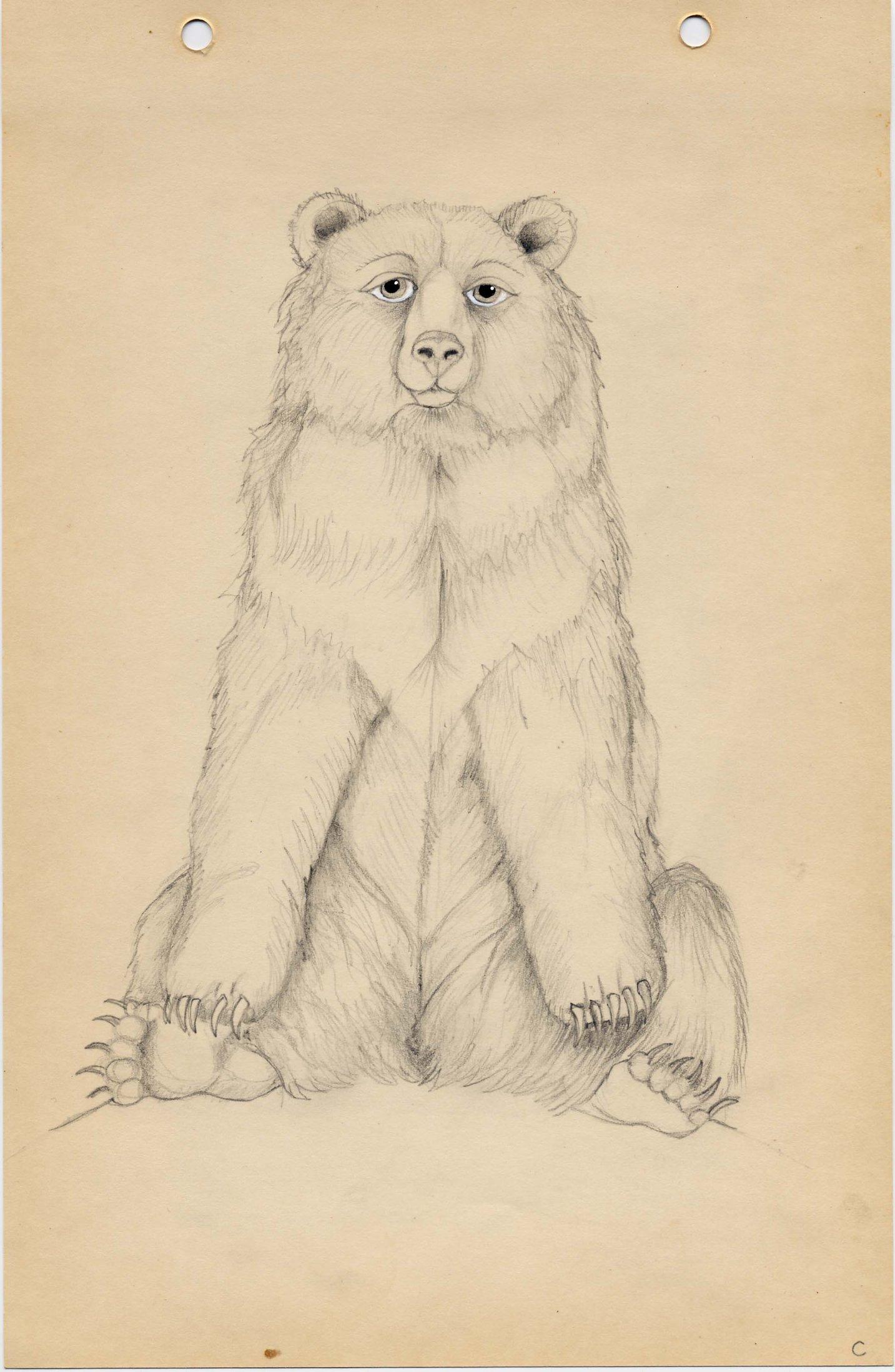 Bear (2005)