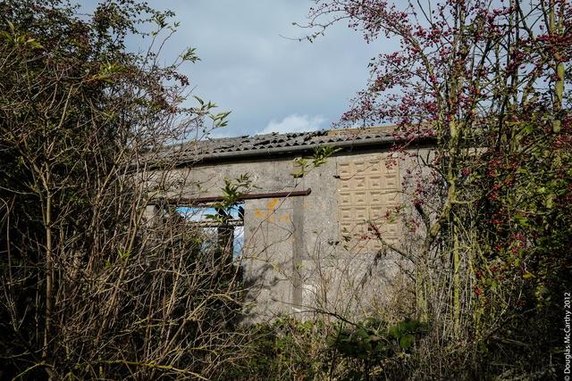 Derelict outbuilding, Broom Downs