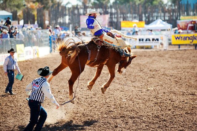 Tucson Rodeo II