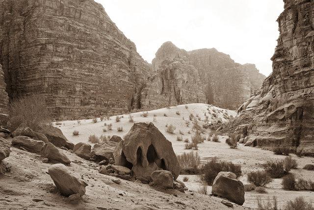 Wadi Rum B&W