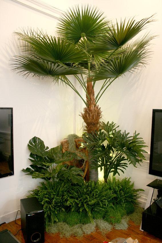 Jungle LG 118.jpg