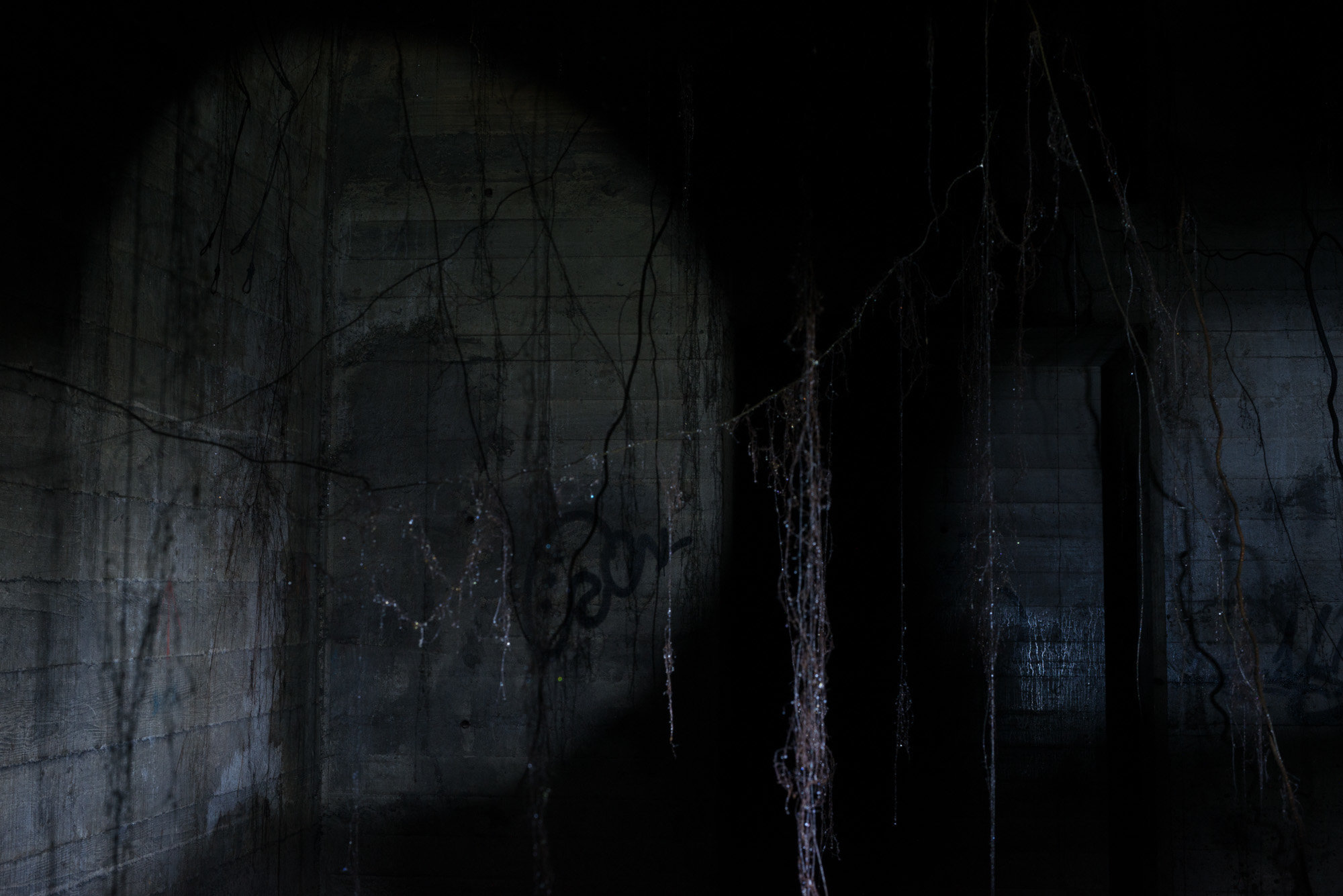 Davis Jones, Waiting 2016, video still, single channel HD video with stereo sound, 11 minute loop