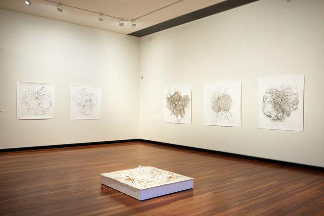 Installation Artspace Mackay