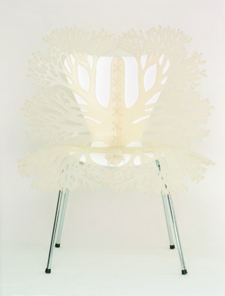 Butterfly chair.jpg