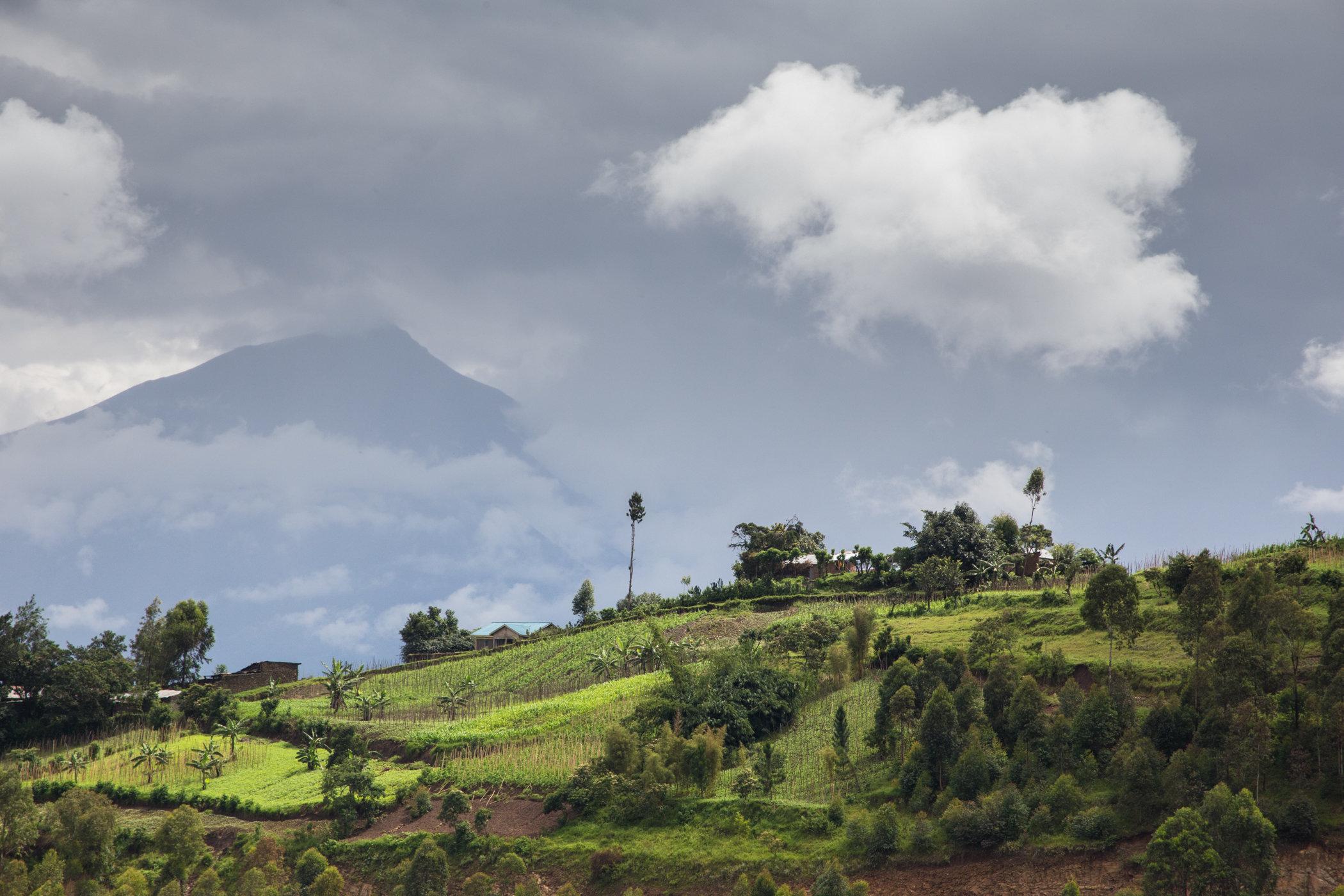 Uganda Road Trip_Series-IMG_0486-untitled.jpg