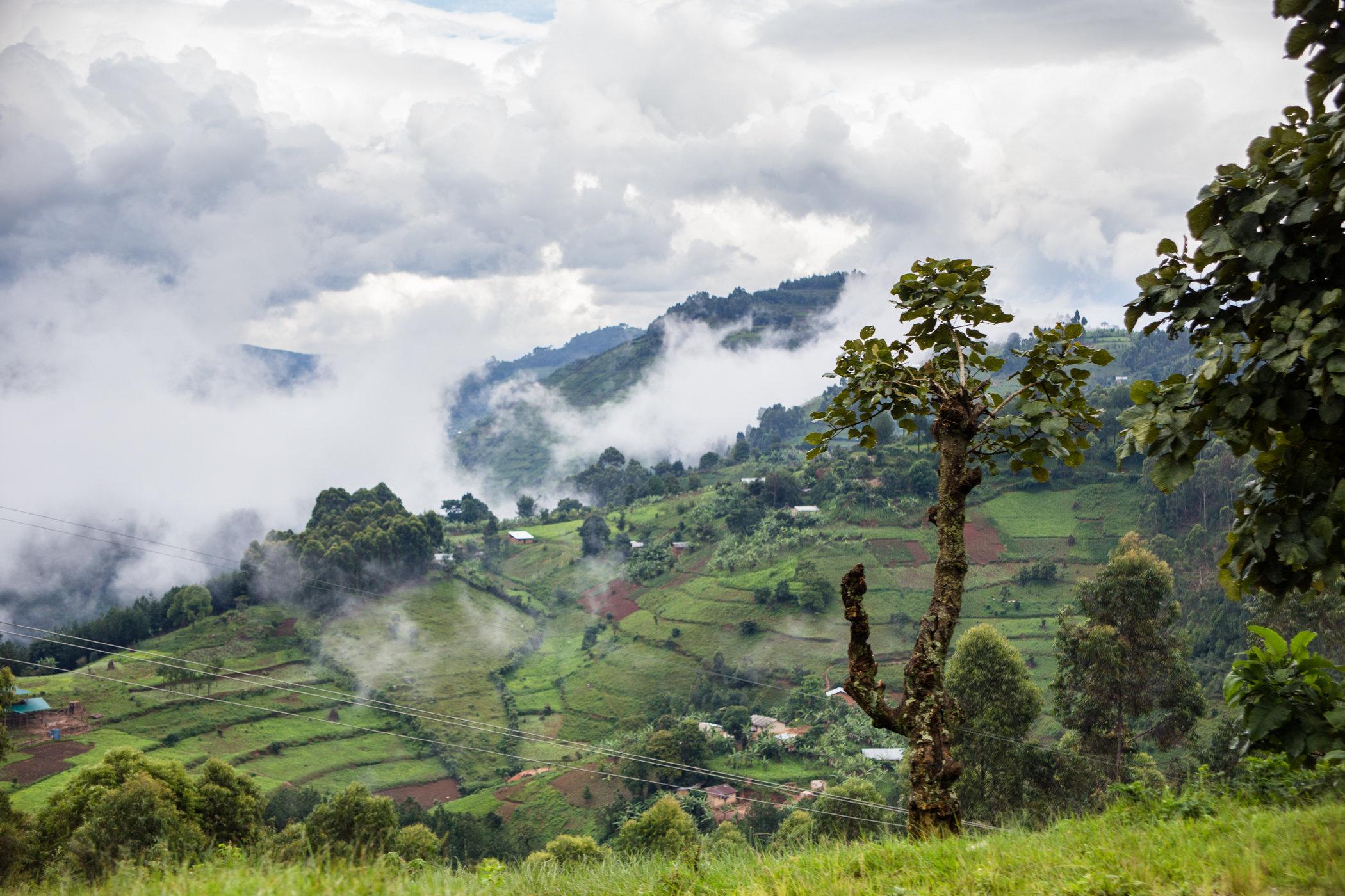 Uganda Road Trip_Series-IMG_0528-untitled.jpg