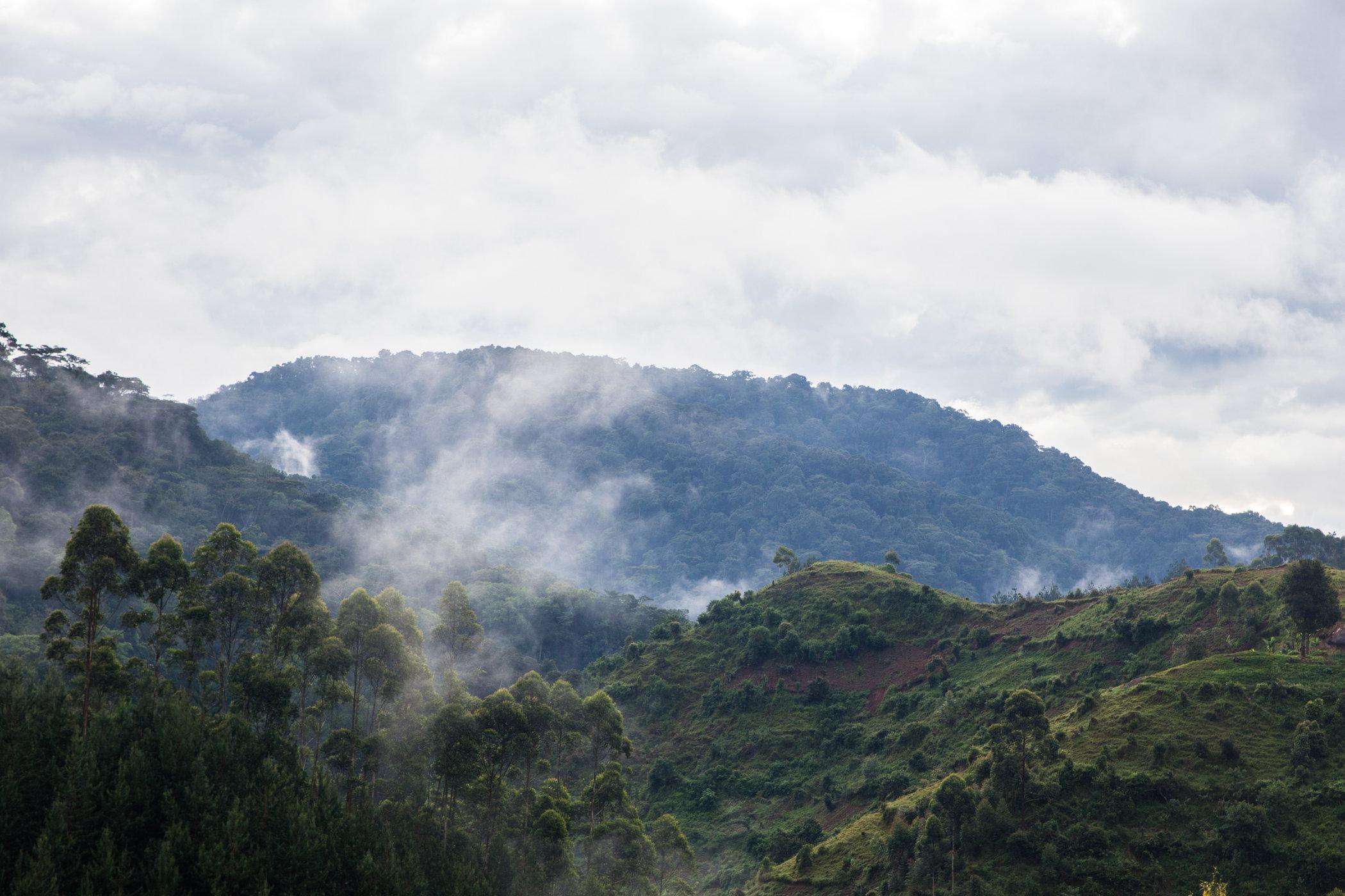 Uganda Road Trip_Series-IMG_0718-untitled.jpg