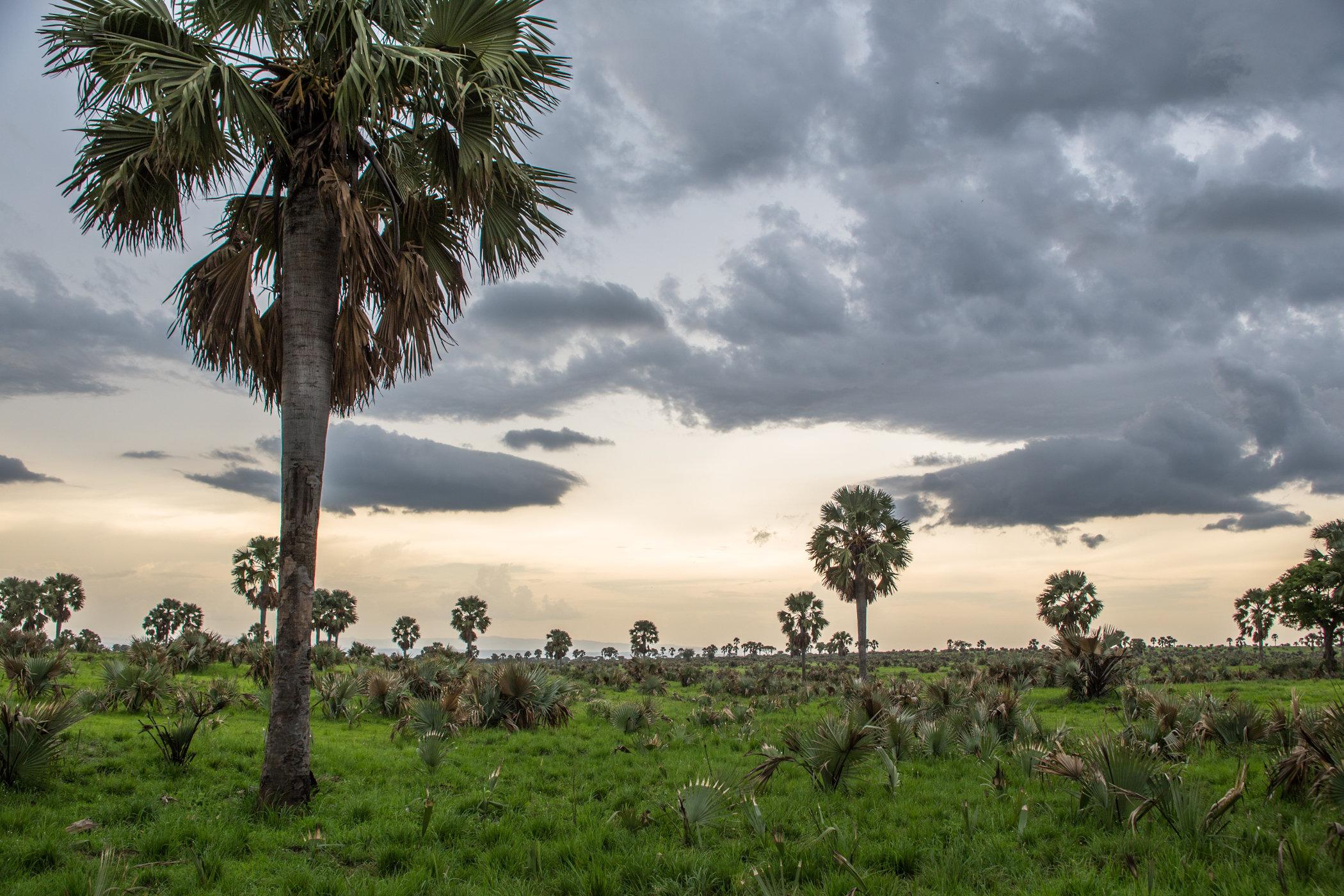 Uganda Road Trip_Series-IMG_1597-untitled.jpg