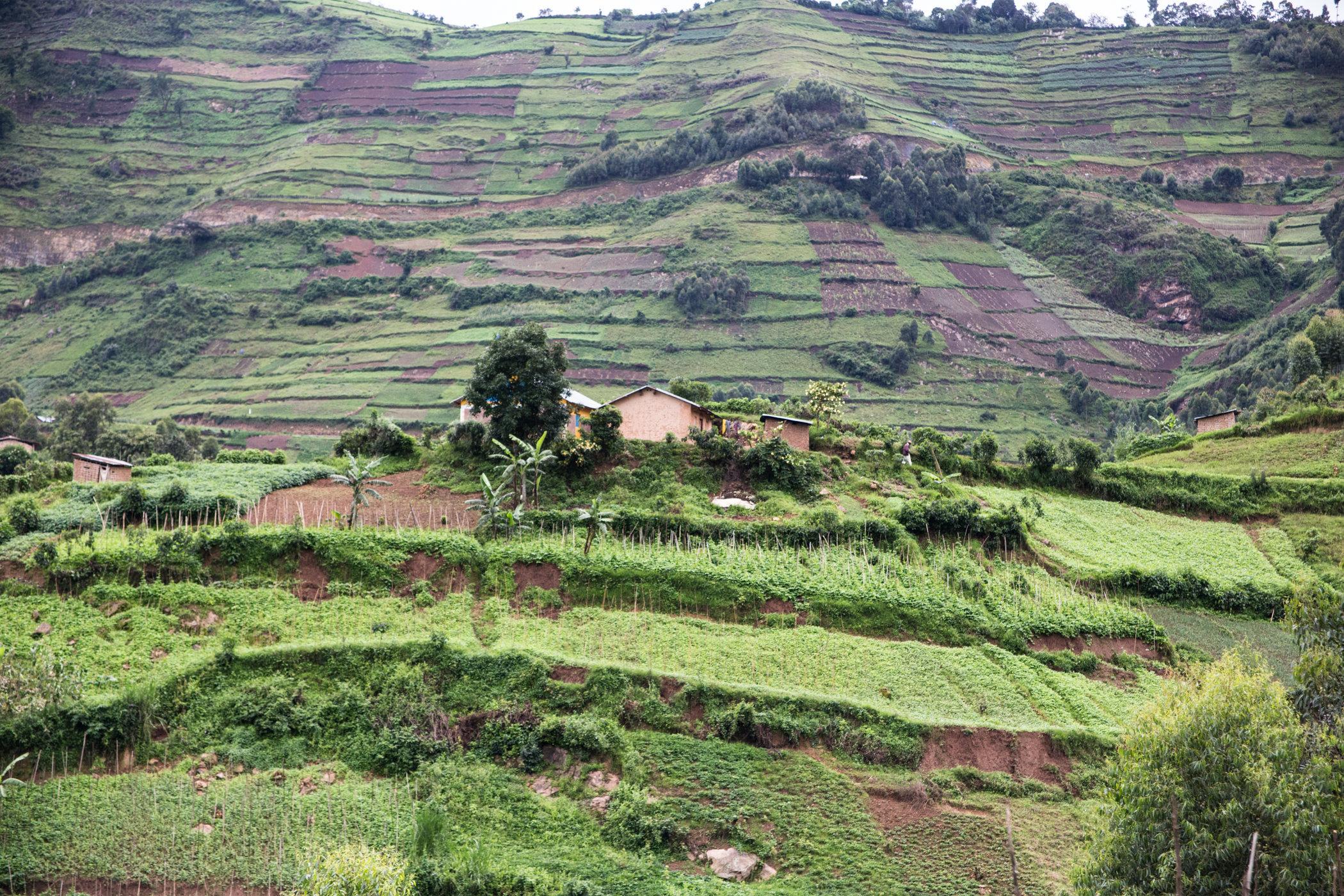 Uganda Road Trip_Series-IMG_0825-untitled.jpg