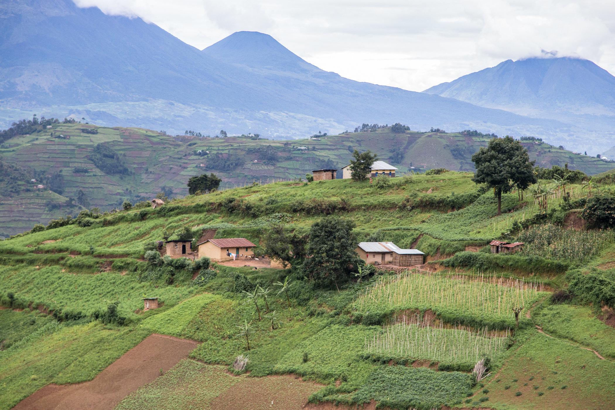 Uganda Road Trip_Series-IMG_0827-untitled.jpg