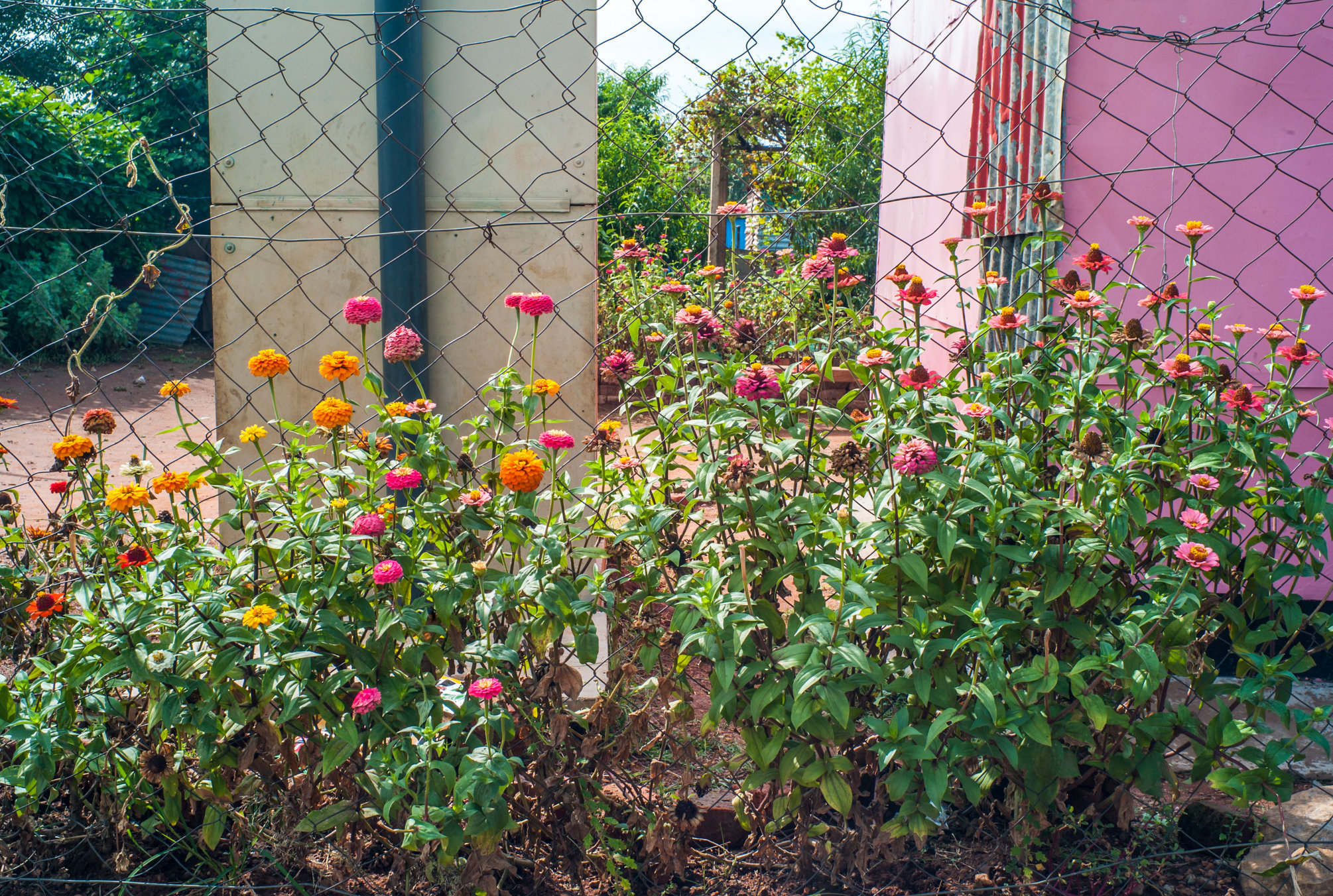 Garden_Route_Series-L1003822.jpg