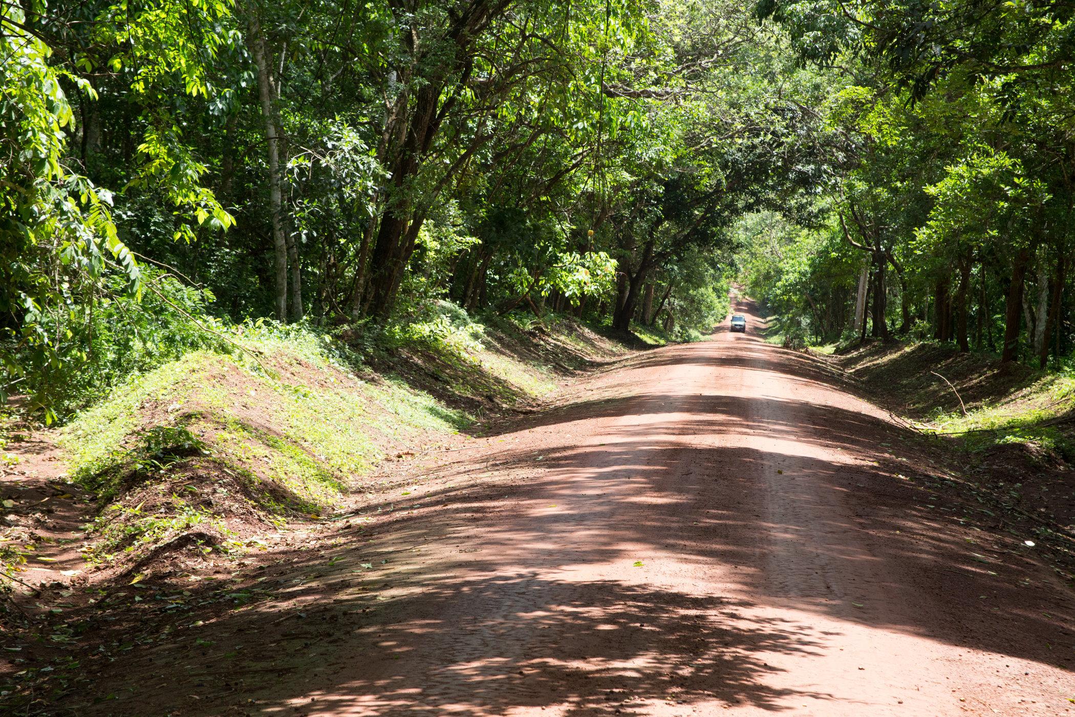 Uganda Road Trip_Series-IMG_1403-untitled.jpg