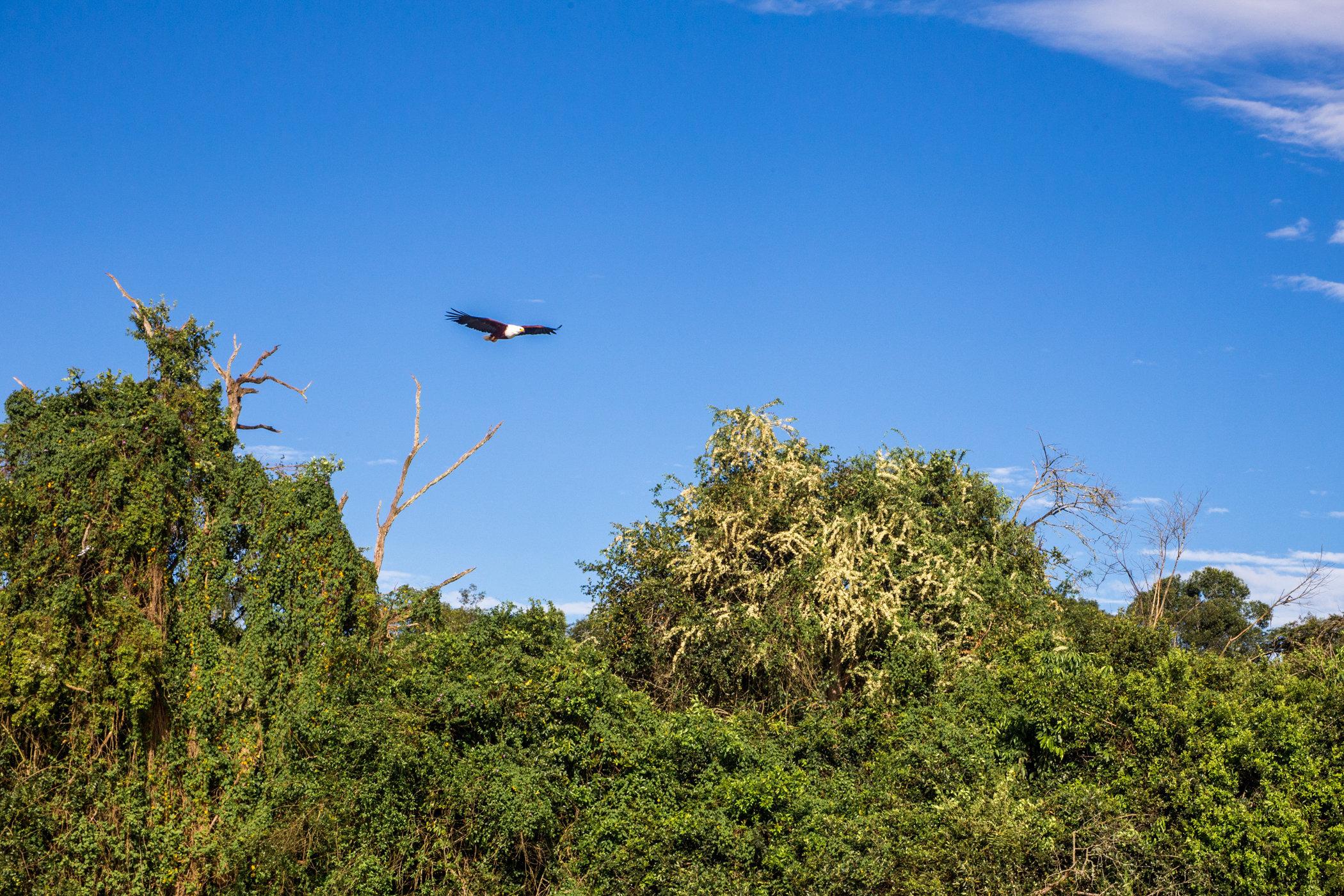 Uganda Road Trip_Series-IMG_0414-untitled.jpg