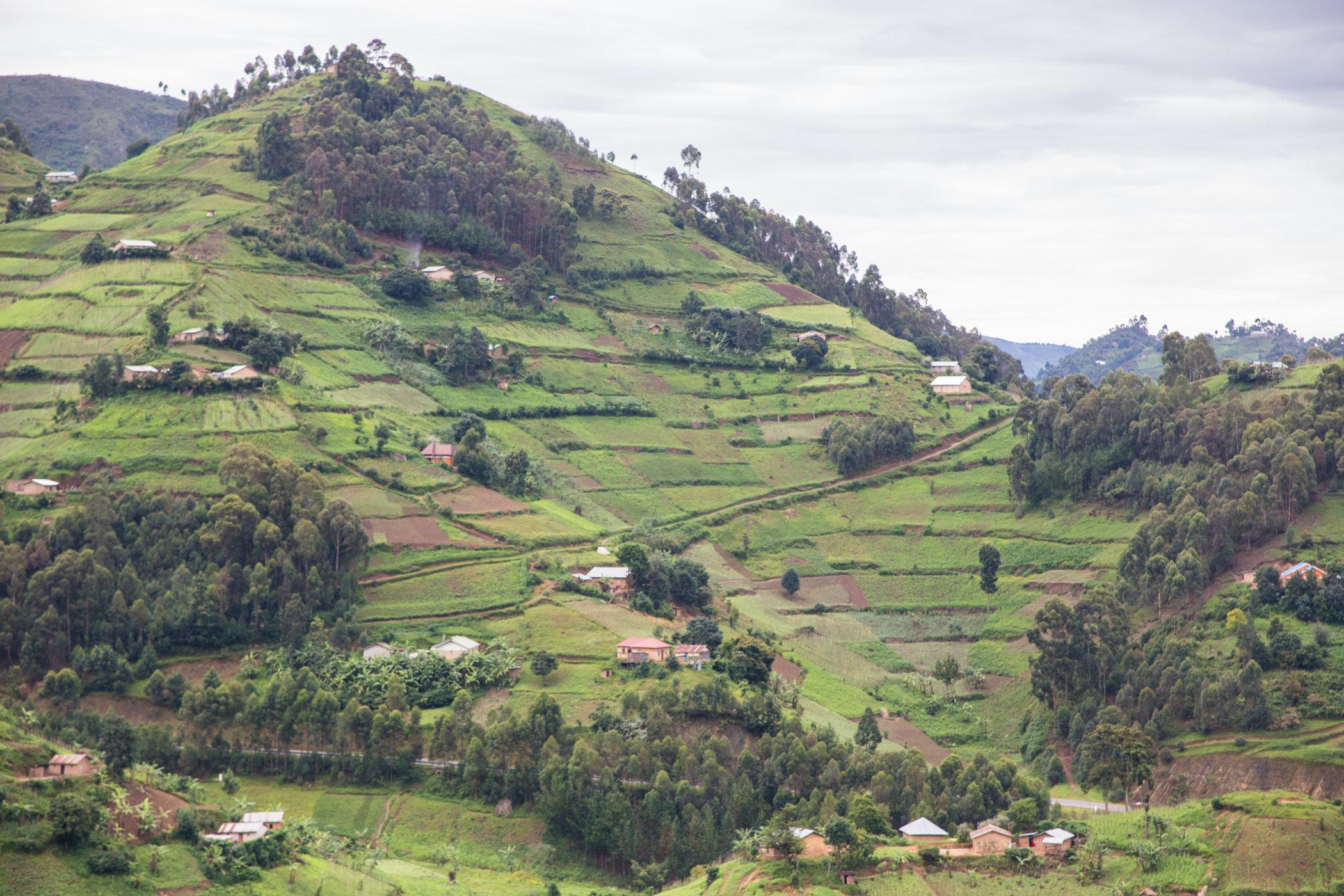 Uganda Road Trip_Series-IMG_0828-untitled.jpg