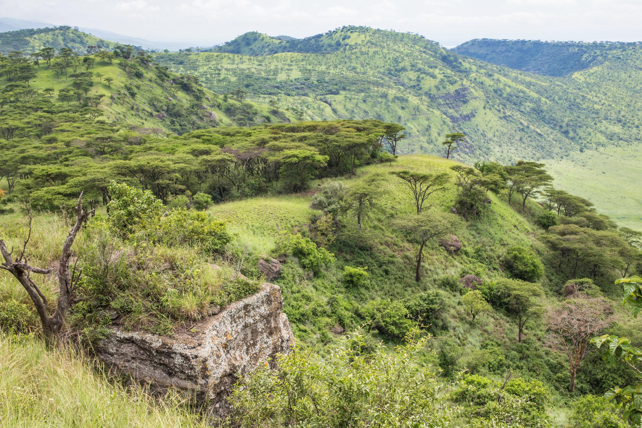 Uganda Road Trip_Series-IMG_1105-untitled.jpg