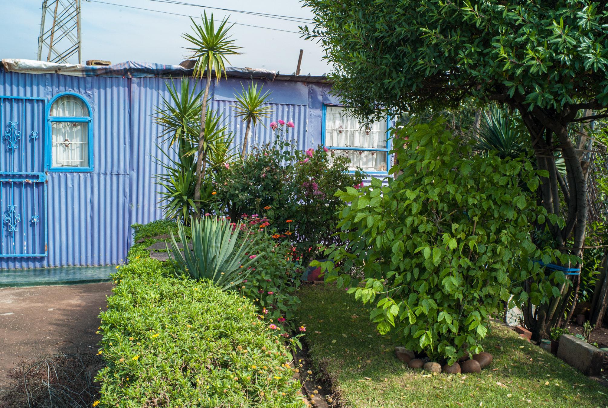 Garden_Route_Series-L1003823.jpg