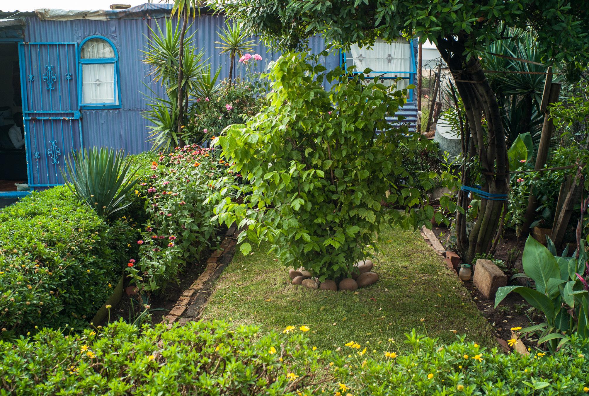 Garden_Route_Series-L1003801.jpg