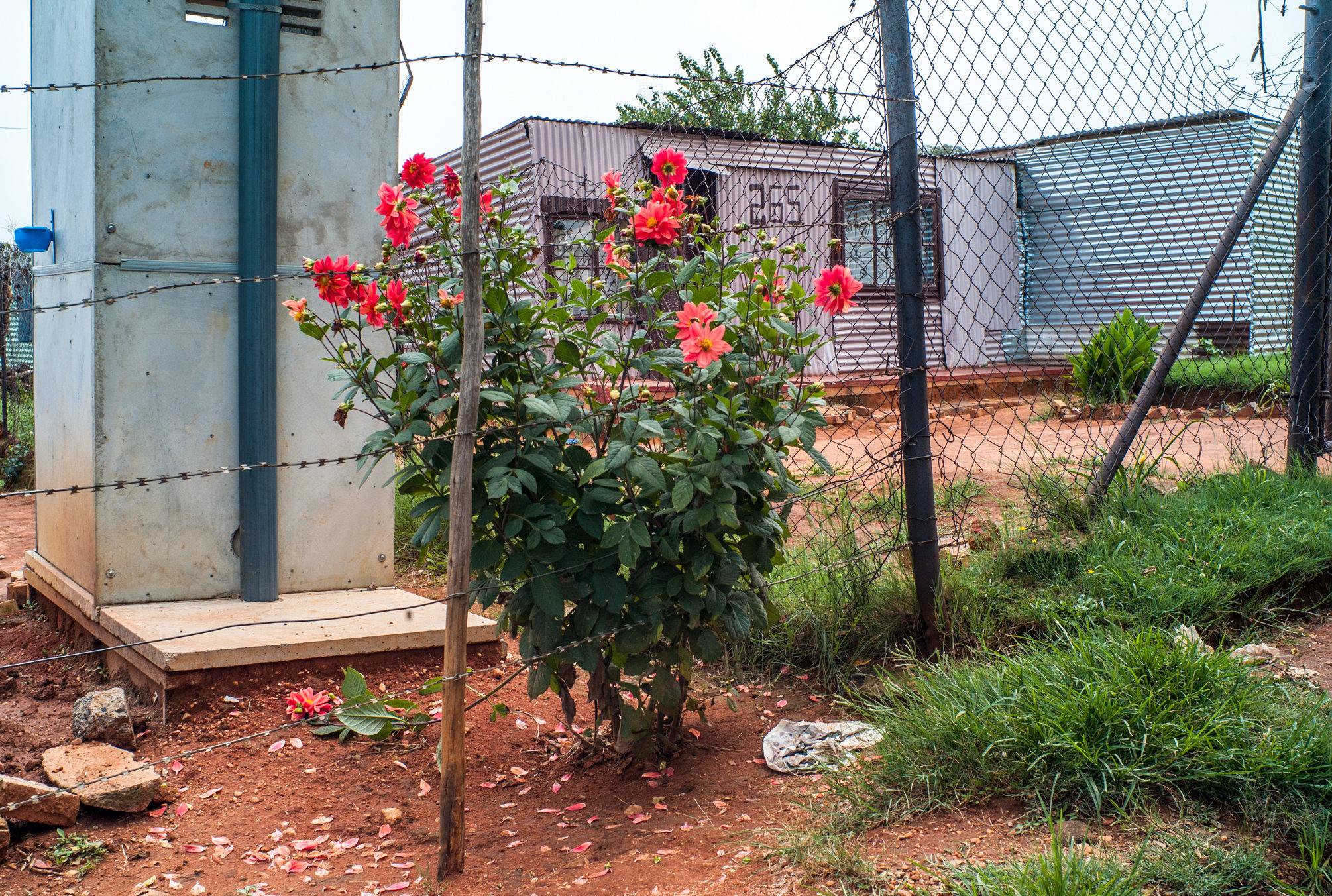 Garden_Route_Series-L1003919.jpg
