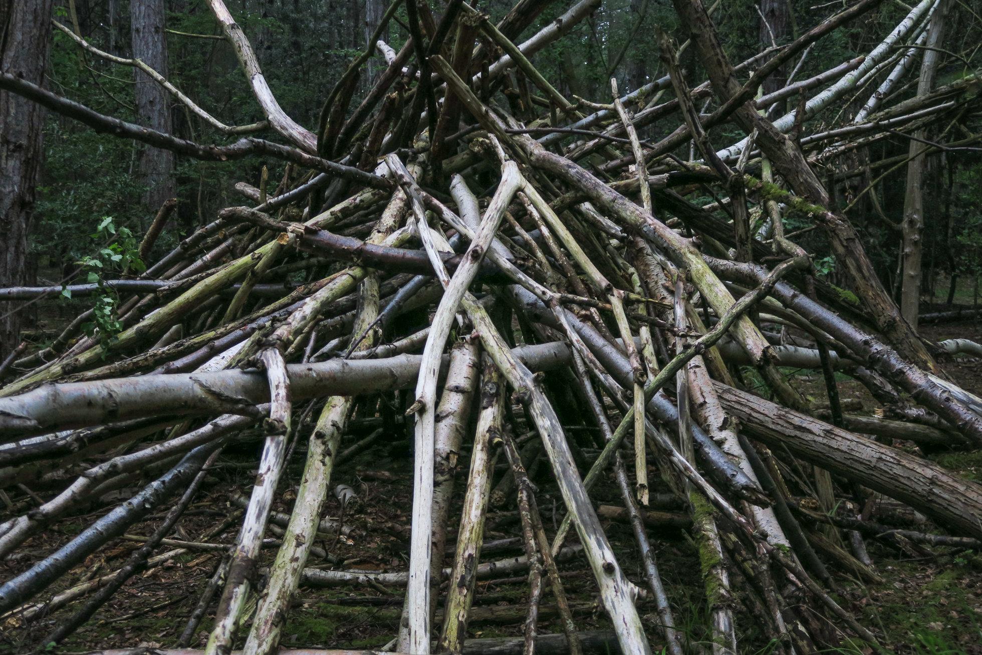 The_Wood-1506.jpg