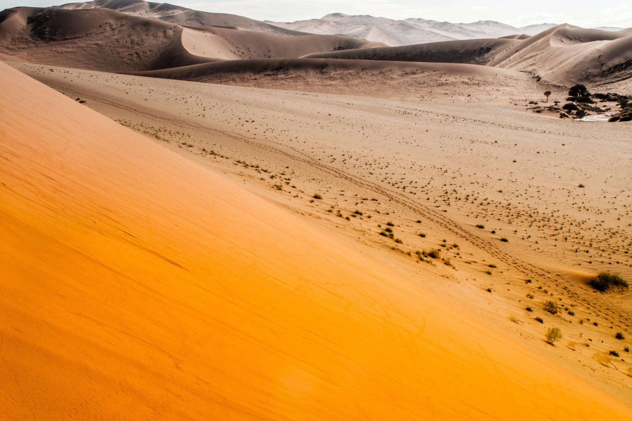 Africa travel-IMG_0921.jpg