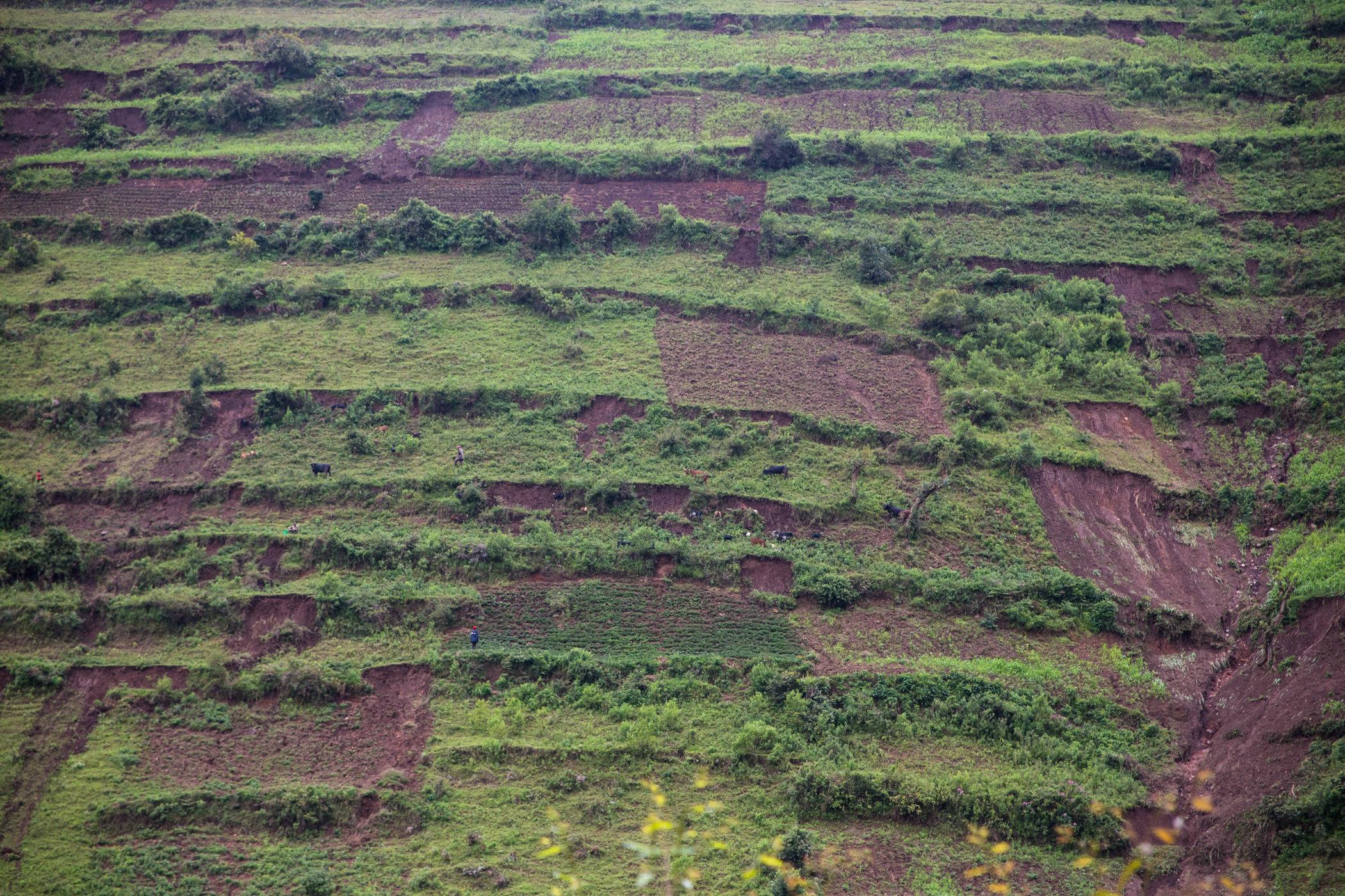 Uganda Road Trip_Series-IMG_0462-untitled.jpg