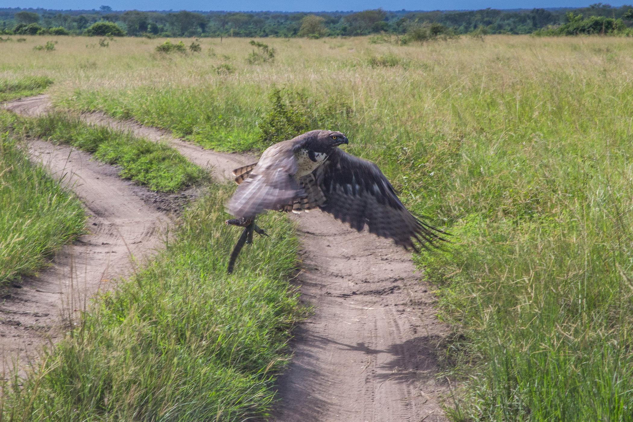 Uganda Road Trip_Series-IMG_0895-untitled.jpg