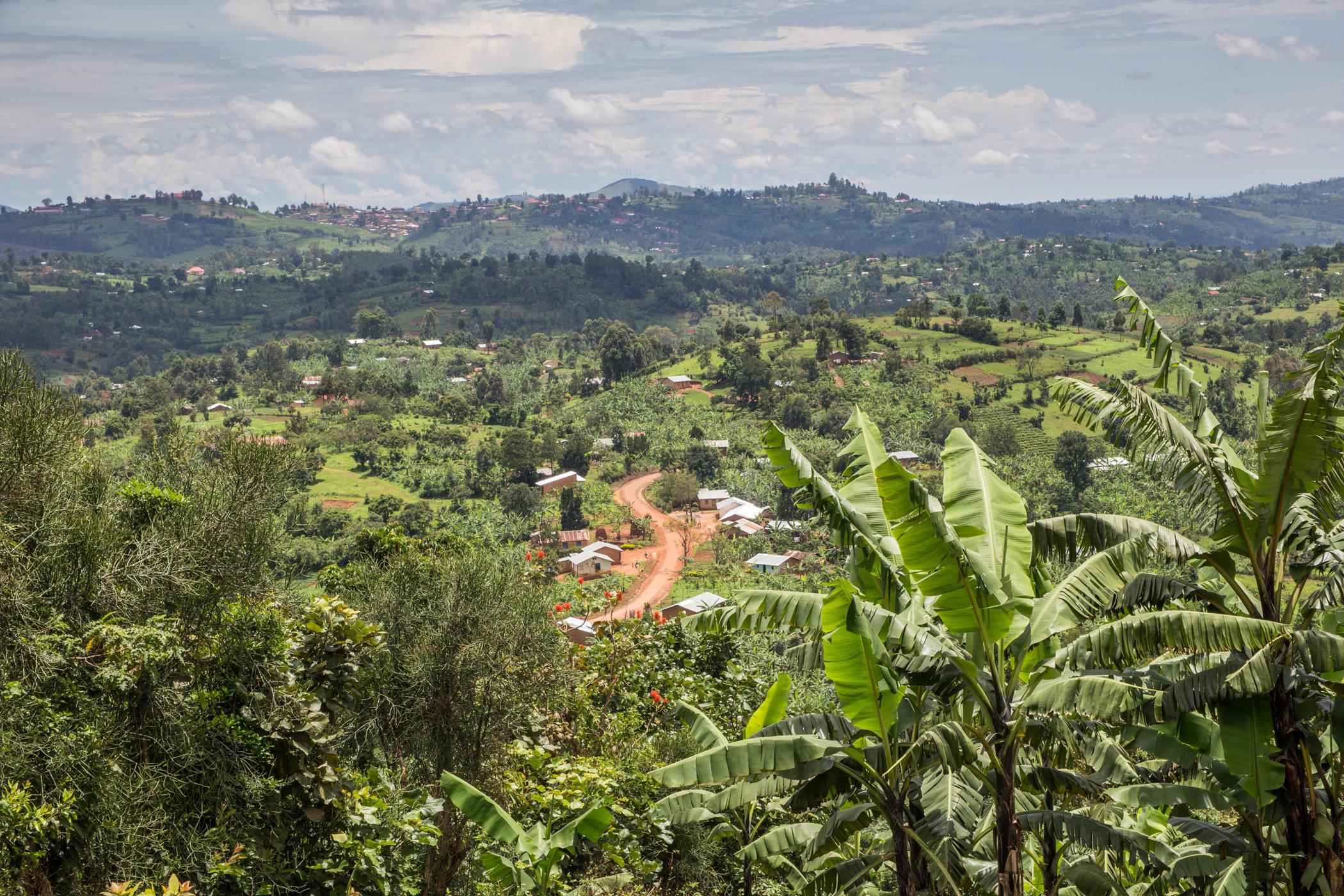 Uganda Road Trip_Series-IMG_0851-untitled.jpg