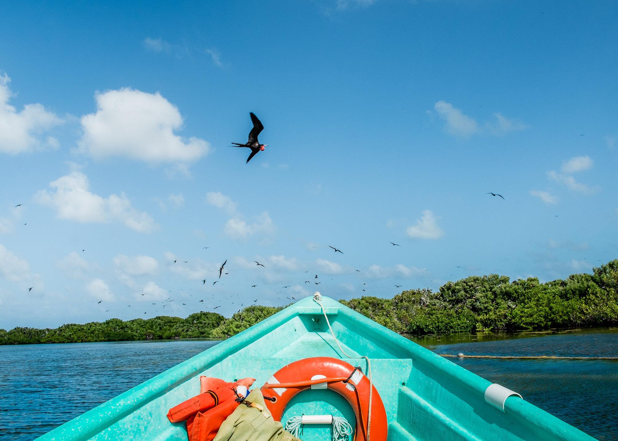 Caribbean, impressions-4941.jpg
