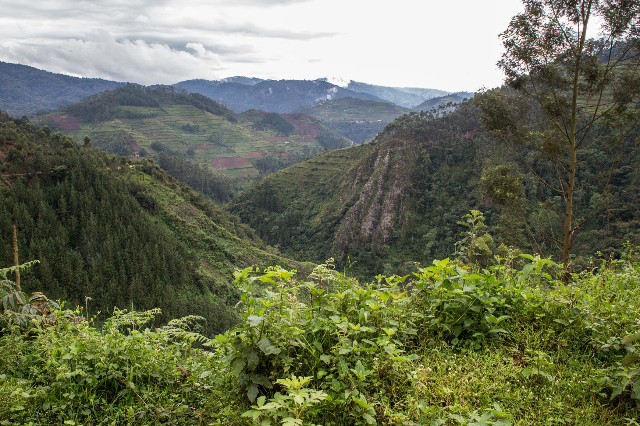 Uganda Road Trip_Series-IMG_0731-untitled.jpg