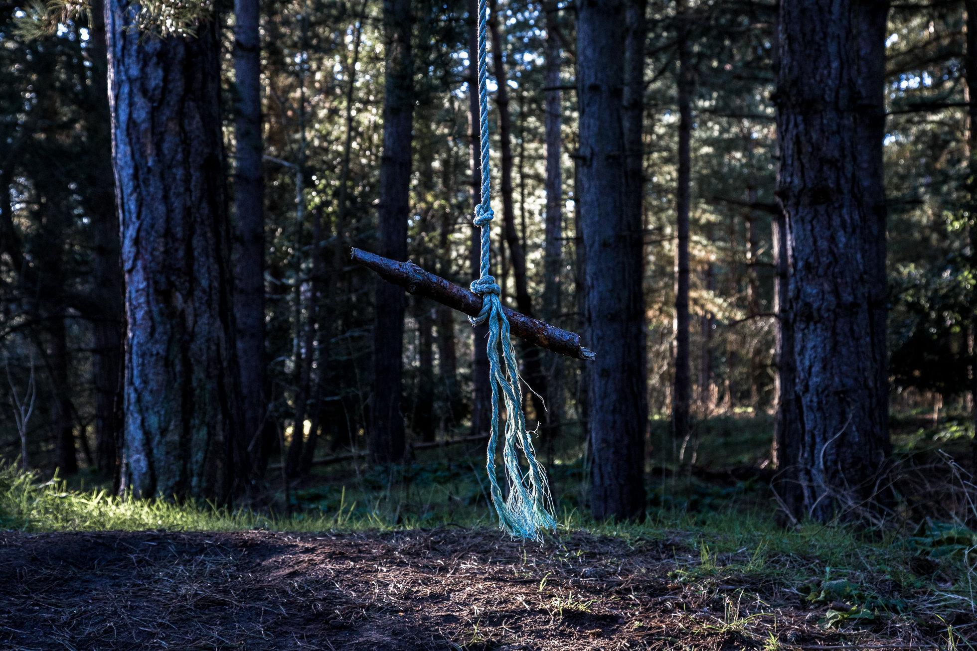 The_Wood-9101.jpg