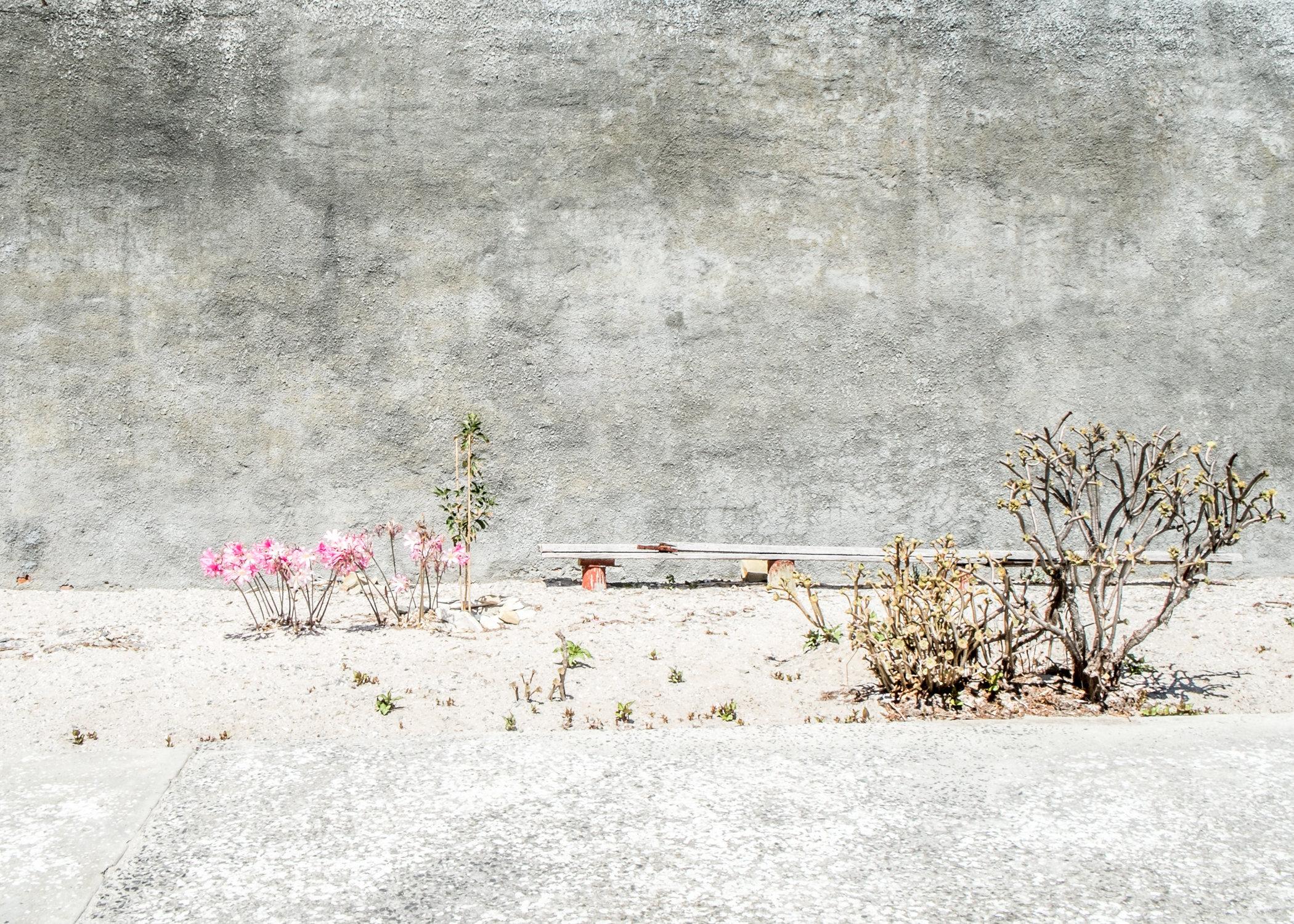 Robben_Island_Prints-8632.jpg