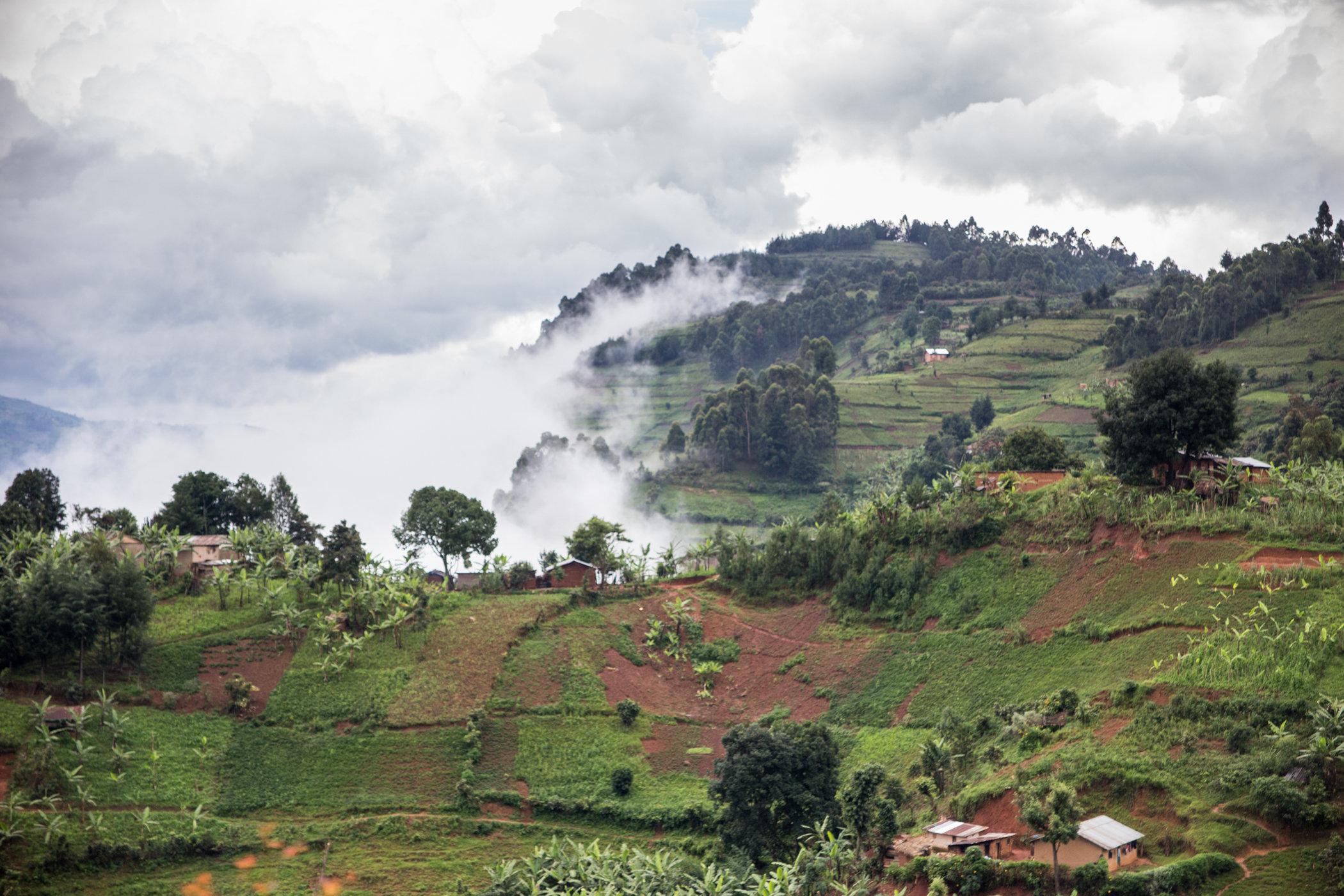 Uganda Road Trip_Series-IMG_0530-untitled.jpg