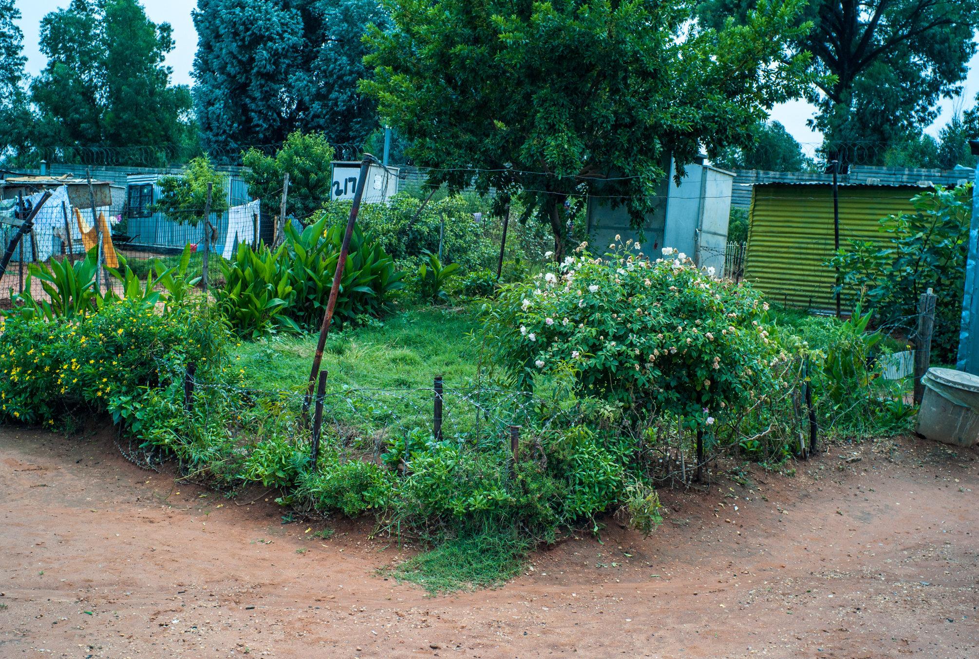 Garden_Route_Series-L1003930.jpg