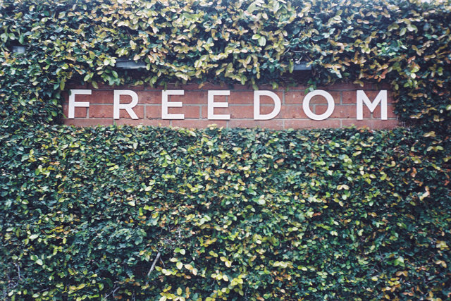 freedombc.jpg