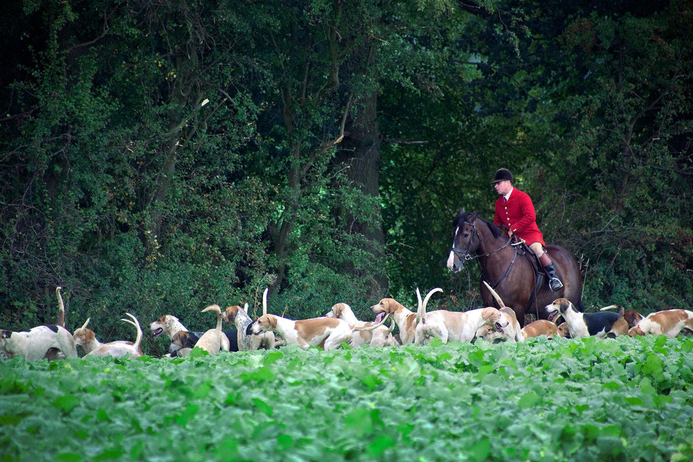Wheatland Hunt, Autumn Hunting