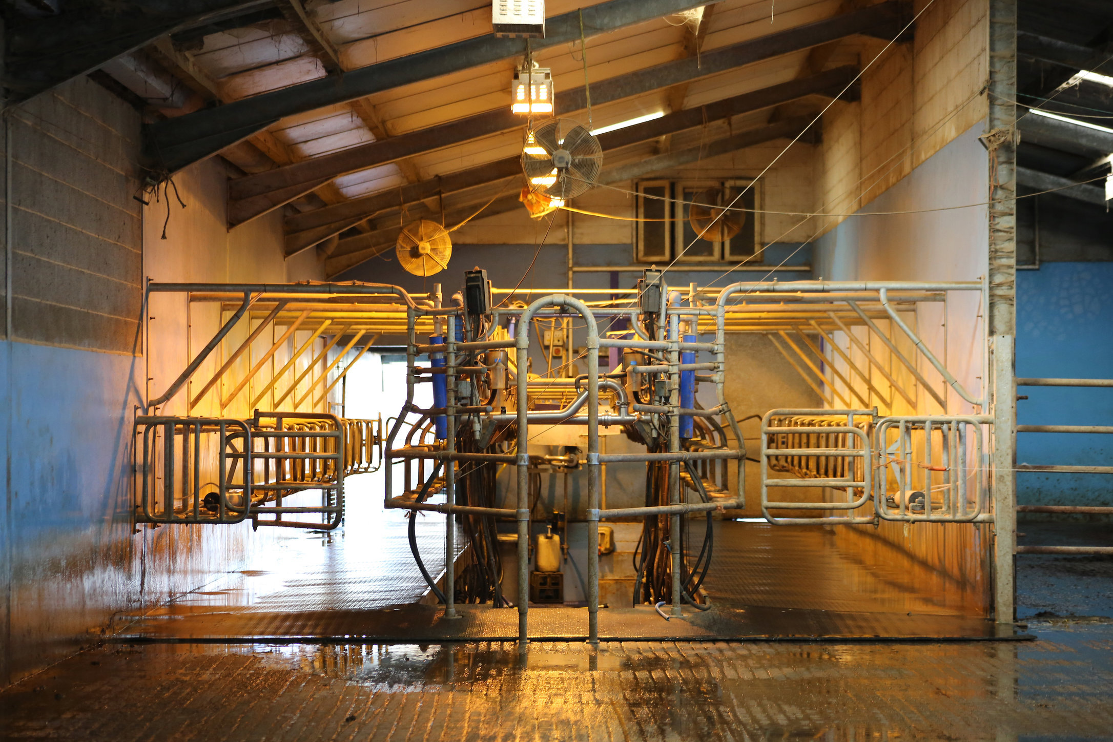 2 Milking Parlour, Bosley Mill Farm, Gloucestershire.JPG