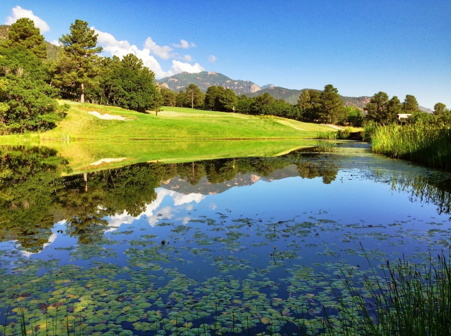 broadmoor-golf-club047.JPG