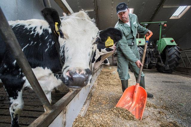 Erik van Oosterhout, melkveehouder, 2019